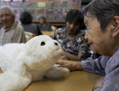 Paro the robotic seal welcomed by residents